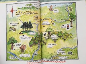 shepard's-hundred-acre-wood