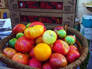 Heirloom-Tomatoes-in-a-basket