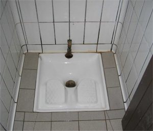 French_Squatter_Toilet